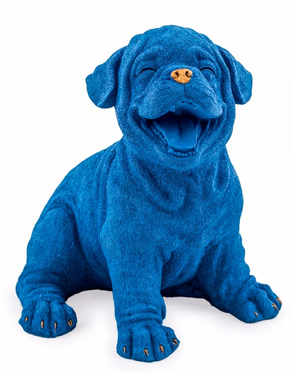 Royal Blue with Gold Laughing Puppy
