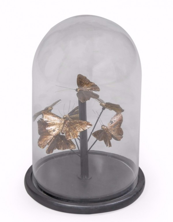 Antiqued Gold Butterflies Glass Dome