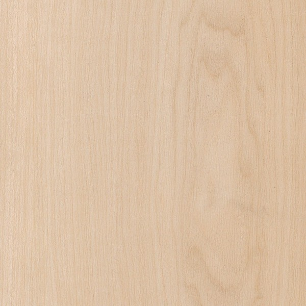 Amtico Spacia Pale Maple SS5W2518