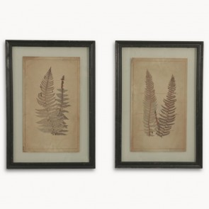 Brookby Print Set of 2